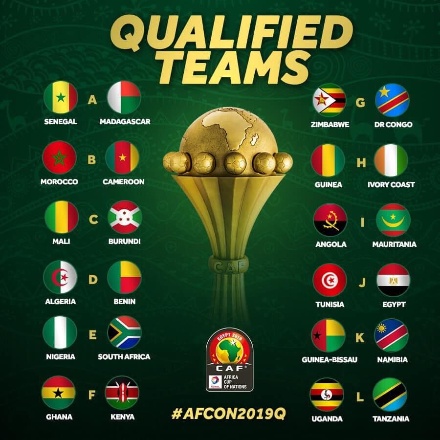 AFCON 2019 Qualified Teams
