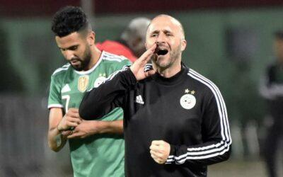 'No small teams in African football' – Algeria coach Djamel Belmadi